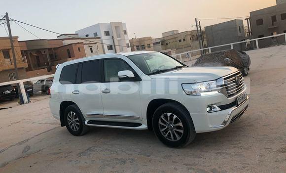 Acheter Occasions Voiture Toyota Land Cruiser Blanc à Bamako au Mali