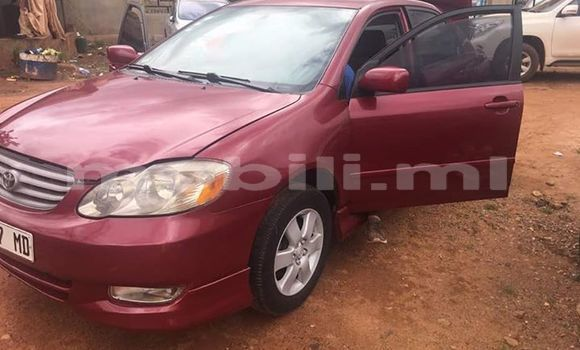 Acheter Occasions Voiture Toyota Corolla Rouge à Bamako au Mali
