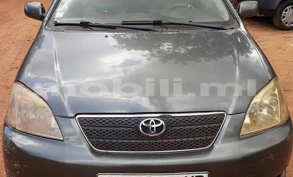 Acheter Occasions Voiture Toyota Corolla Autre à Bamako au Mali