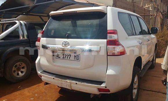 Acheter Occasion Voiture Toyota Land Cruiser Blanc à Bamako, Mali