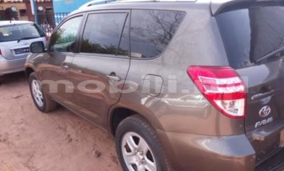 Acheter Occasion Voiture Toyota RAV4 Marron à Bamako, Mali