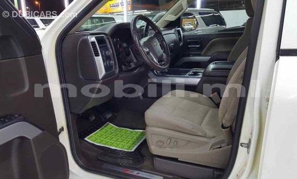 Acheter Importé Voiture Chevrolet Silverado Blanc à Import - Dubai, Mali