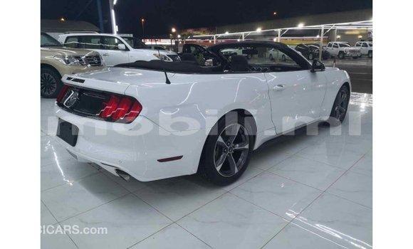 Acheter Importé Voiture Ford Mustang Blanc à Import - Dubai, Mali