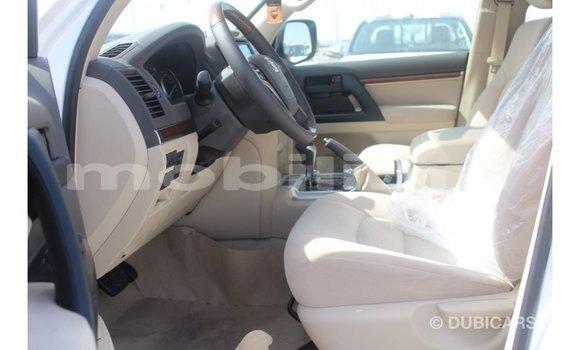 Acheter Importé Voiture Toyota Land Cruiser Blanc à Import - Dubai, Mali