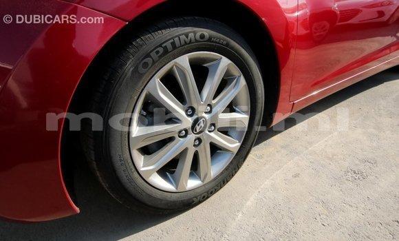 Acheter Importé Voiture Hyundai Elantra Rouge à Import - Dubai, Mali