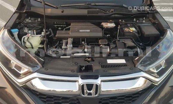Acheter Importé Moto Honda C Autre à Import - Dubai, Mali