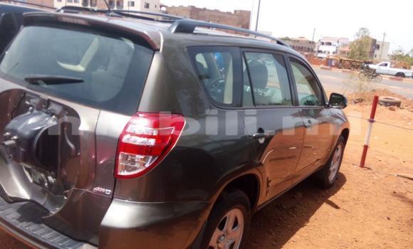 Acheter Occasion Voiture Toyota RAV4 Marron à Bamako au Mali