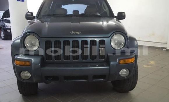 Medium with watermark jeep cherokee mali kati 5963