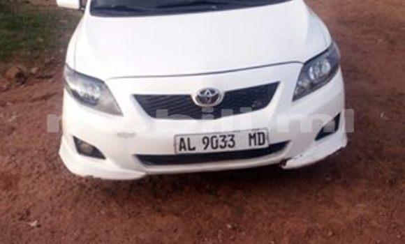 Acheter Occasion Voiture Toyota Corolla Autre à Bamako au Mali