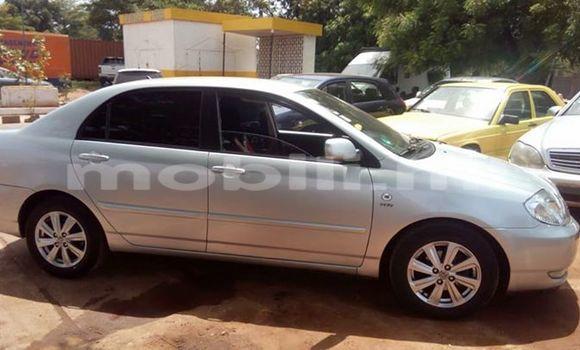 Acheter Occasion Voiture Toyota Corolla Gris à Bamako au Mali