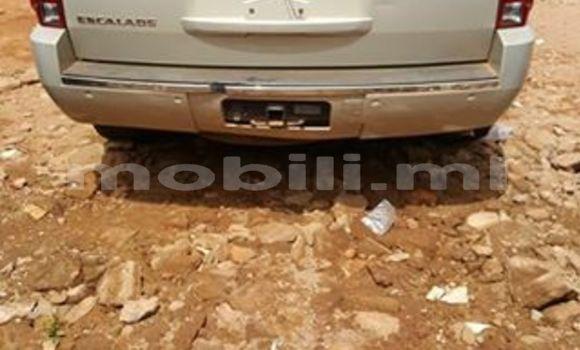 Acheter Occasions Voiture Cadillac Escalade Blanc à Bamako au Mali