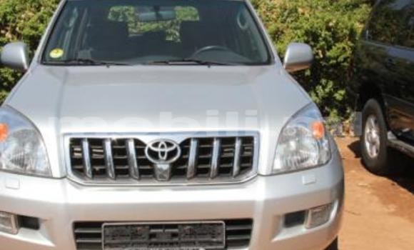 Acheter Occasion Voiture Toyota Land Cruiser Gris à Bamako au Mali