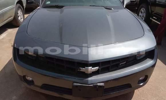Acheter Occasion Voiture Chevrolet Camaro Noir à Bamako au Mali