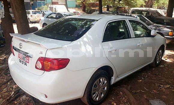 Acheter Occasion Voiture Toyota Corolla Blanc à Bamako au Mali