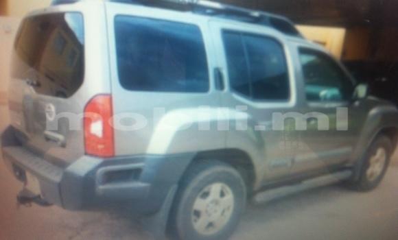Acheter Occasion Voiture Nissan Xterra Gris à Bamako au Mali